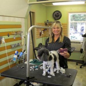 Dog Grooming Cornelius Nc